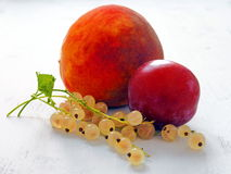 Summer Fruits and Berries Close-up on White Wooden Table. Peach, Plum and White Currants Close-up on White Wooden Table Stock Image