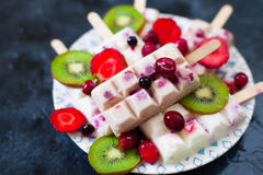 Summer fruits and berry homemade lolly pops ice cream. Group of Royalty Free Stock Photography