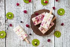 Summer fruits and berry homemade lolly pops ice cream. Group of Stock Image