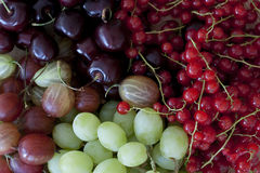 Summer fruits. Close up of colorful summer fruits Stock Photo
