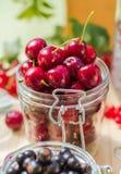 Summer fruits closeup cherries jar processed Stock Photography