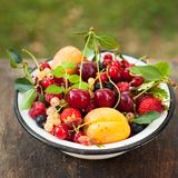 Summer fruits Royalty Free Stock Images