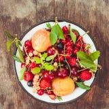 Summer fruits Stock Image