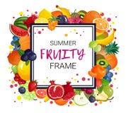 Summer Fruits Frame Background Royalty Free Stock Image