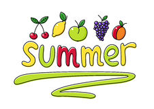 Summer fruits fruit vector illustration Royalty Free Stock Photo