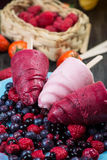 Summer fruits homemade lolly pops ice Royalty Free Stock Images