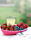 Summer Fruits II Stock Photography