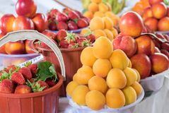 Summer fruits - nectarines, apricots and strawberry. Summer fruits- nectarines, apricots and strawberry with leaves royalty free stock photography