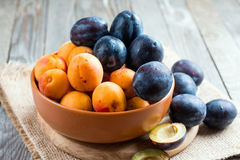 Summer fruits - plums and apricots in a bowl on wooden background. Summer fruits - plums and apricots in a bowl stock image