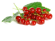 Free Summer Fruits: Redcurrant Royalty Free Stock Images - 1169249