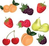 Summer fruits set Stock Photo