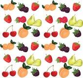 Summer fruits set Stock Image