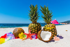 Summer fruits and star fish on the sand Stock Image