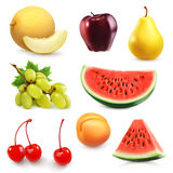 Summer fruits  vector icons Royalty Free Stock Image
