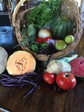 Summer Fruits and Vegetables. Fresh picked summer fruits and vegetables in a basket Stock Photos