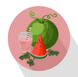 Summer fruits watermelon and smoothie Vector illustration icons Royalty Free Stock Photography
