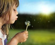 Summer fun. Litytle girl playing outdoor, blowing dandelion Stock Photo