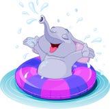 Summer fun elephant. Swimming with lifesaver Stock Image