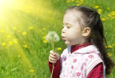 Summer fun, sweet little girl blowing dandelion Royalty Free Stock Photos
