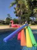 Summer fun at the swimming pool. Pool noodles, inflatable pink flamingo drinks holder and a drink on the poolside in a Mediterranean garden. Fun, summer vibes stock photo