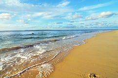 Summer fun tropical island beautiful sandy seaside Royalty Free Stock Photography