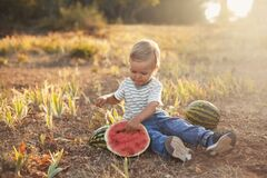 Free Summer Fun Vacation Of Little Cute Boy With Watermelon Stock Photography - 216781042