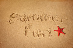 Summer fun written on sand. With starfish Royalty Free Stock Photo