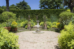 Summer garden Royalty Free Stock Images