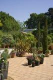 Summer Garden. A terraced garden in the sun royalty free stock photo