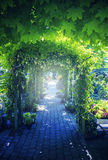 Summer garden arch stock photography