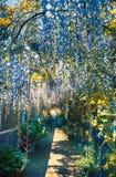 Summer garden arch Stock Image