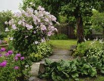 Summer garden blossom flower village landscape. Summer day flower blossom outdoor garden tree branch landscape village wood fence royalty free stock photography