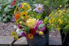 Summer garden bouquet with Dahlia's Stock Image