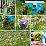 Summer garden collage Stock Photo