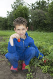 In the summer the garden curly boy vomits strawberries. Royalty Free Stock Photo