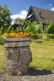 Summer garden decoration. Swedish outdoor summer decoration in sunny day Royalty Free Stock Image