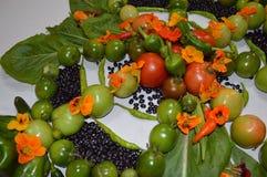 Garden Kaleidoscope Stock Images