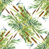 Summer Garden floral seamless pattern on white background with dragonflies Royalty Free Stock Photos