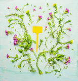 Summer garden flowers with blooming and sign on green wooden background Royalty Free Stock Photography