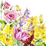 Summer garden flowers. watercolor illustration. Background Stock Photo