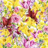 Summer garden flowers. watercolor illustration. Background Stock Photography