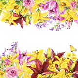 Summer garden flowers. watercolor illustration Royalty Free Stock Photos