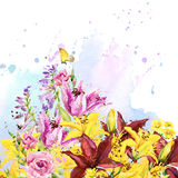 Summer garden flowers. watercolor illustration Royalty Free Stock Photography
