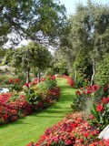 Summer garden. Formal garden showing flowers borders on path Stock Image