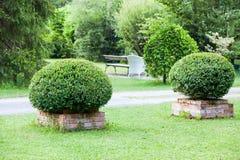 Summer garden. Summer green garden. City park at summer day stock photo
