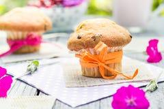 Summer garden muffins fruit cocktail Royalty Free Stock Photos