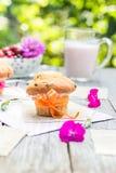 Summer garden muffins fruit cocktail Stock Image