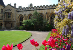 Summer garden Oxford College. Bright summer flowers in the garden of Oxford College in England Royalty Free Stock Photo