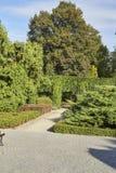 Summer garden in park Royalty Free Stock Photos