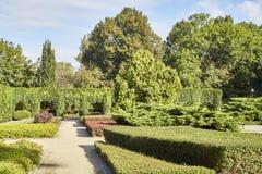 Summer garden in park Stock Photos